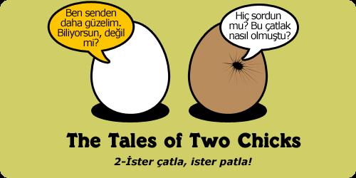 2chicks2istercatla