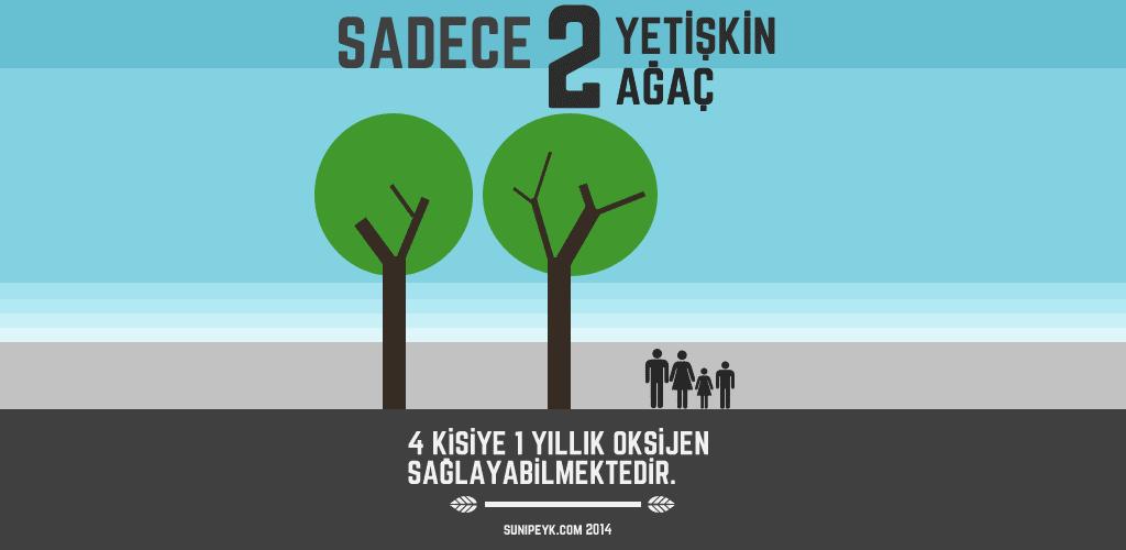 İki ağaç 4 kişiye bir yıllık oksijen verir