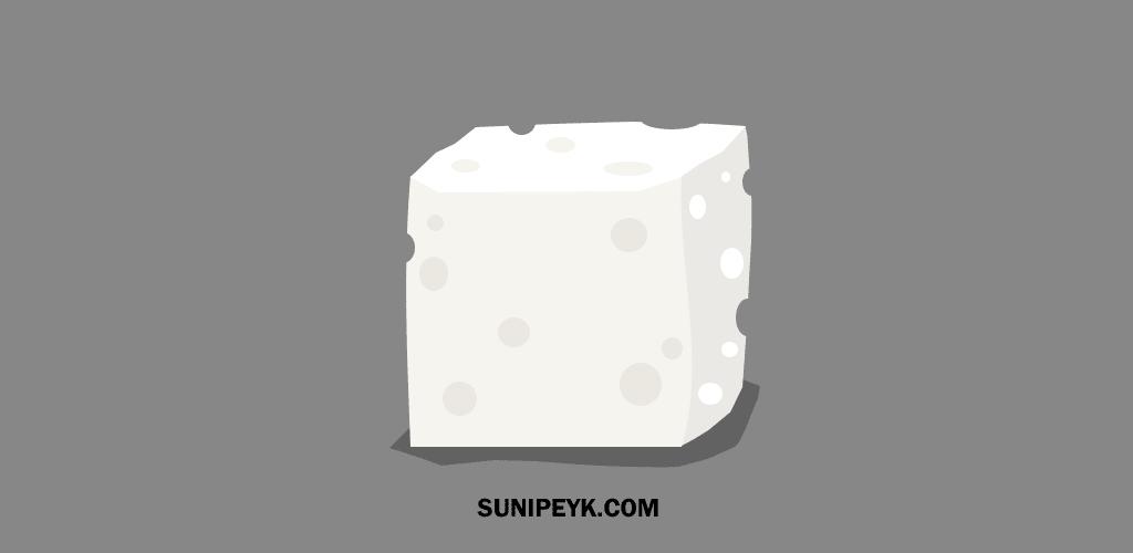 beyaz peynir kalıbı